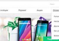 Как положить деньги на счет Мегафона с банковской карты?